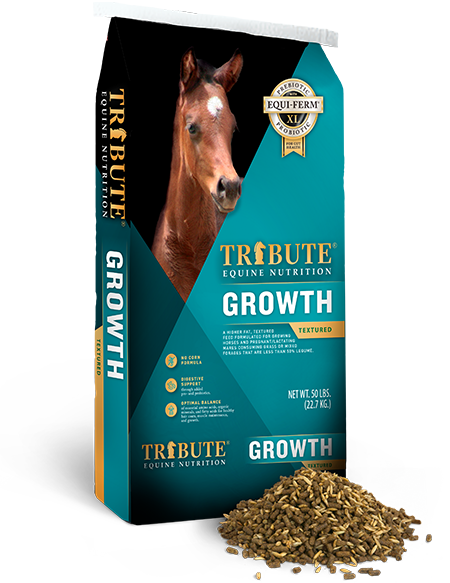 Tribute Equine Nutrition   Horse Feed & Supplements